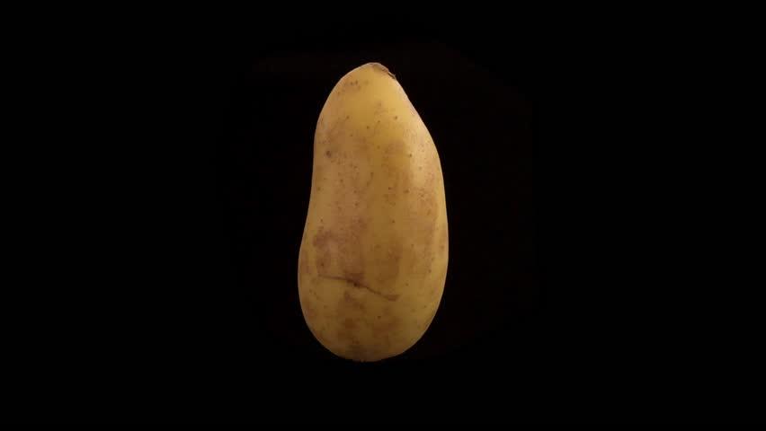 Organic potato to tasty chip animation