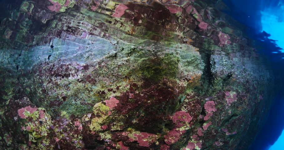 underwater scenery videos ansehen auf y8com - 910×480