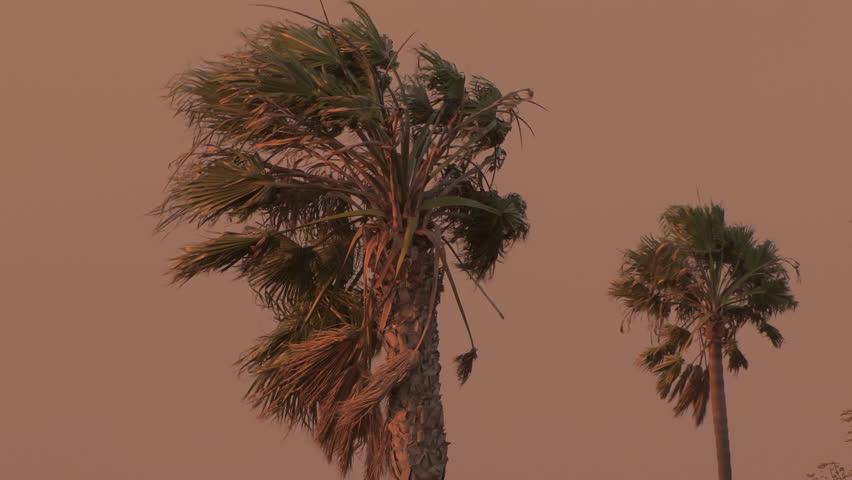 High Wind Morning Sunrise Sunset California Wildfire Santa Anna Winds 4kUHD source Set of 10 -