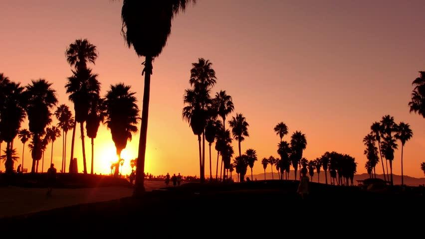 Sunset Beach 12 Silhouette Venice California