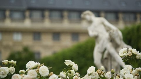 Beautiful white flowers, ancient statue and Luxembourg Palace in Paris, France