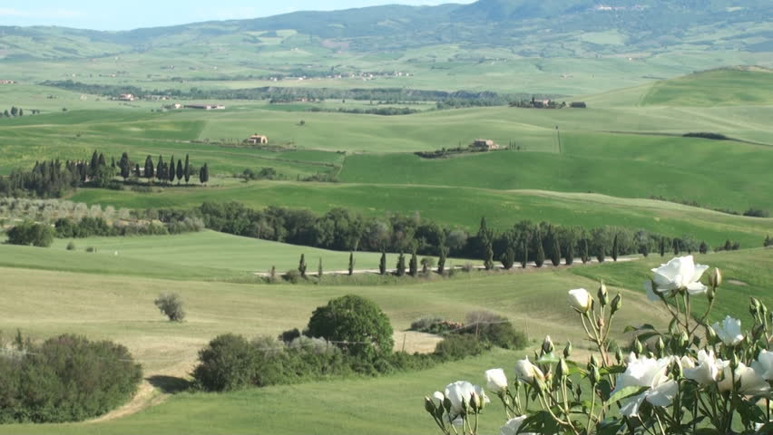 Typical landscape of the Val d'Orcia in Tuscany, Italy