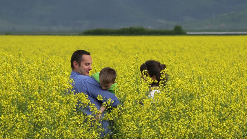 Young parents and son in blossom rape field
