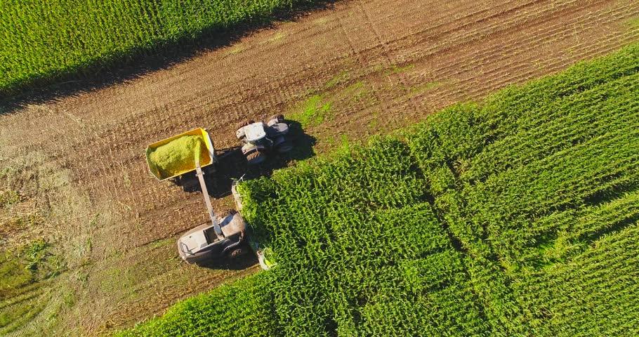 Semi truck and farm machines harvesting corn in Autumn, breathtaking aerial view.