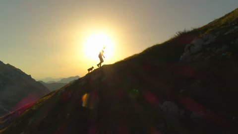 AERIAL SILHOUETTE: Camera flying along and over silhouettes of woman hiker and dog walking up a grassy hill in front of gorgeous golden scenery. Young female and puppy ascending a mountain at sunset.