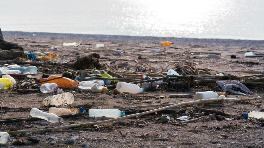 beach polluted with plastic bottles #34193716