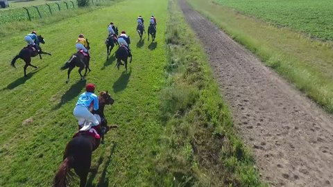Horse race from the air. Horses galloping very fast