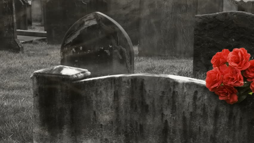 Very slow pan L/R of a bunch of roses on a blank gravestone with a misty foggy effect