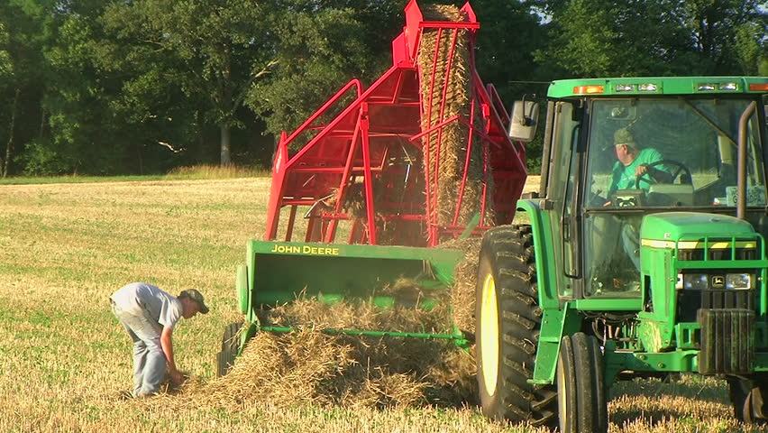 Farmer square baling hay and using accumulator.