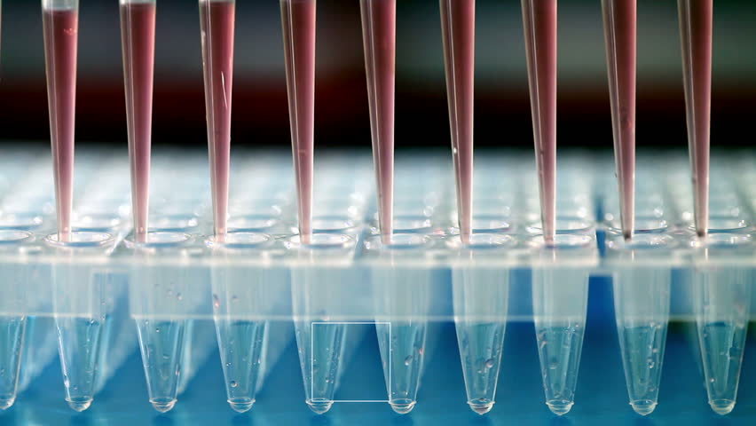 Use multi pipette in microbiology