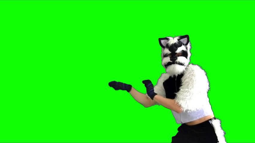 Dancing cat puppet on a green background | Shutterstock HD Video #3729821