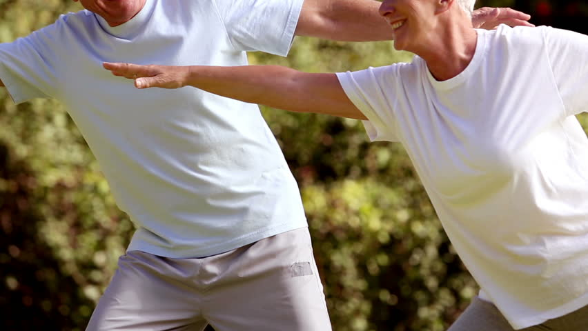 Mature couple practicing tai chi in a park