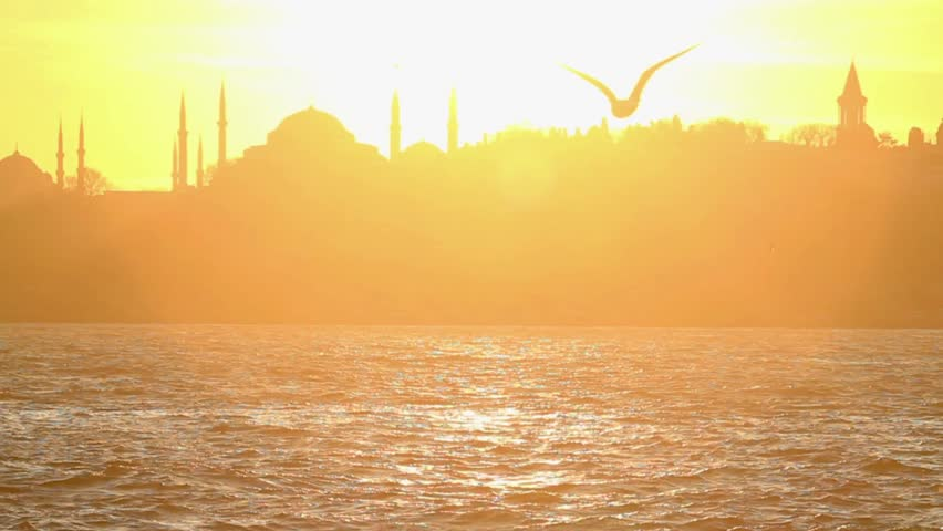 Seagull flying slow motion. Istanbul, Sarayburnu. In the distance are such