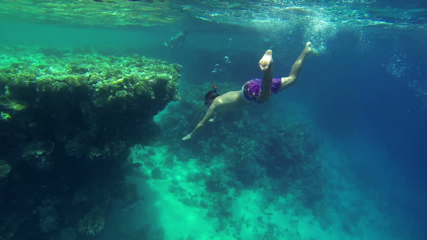 Young man swimming next to sea corals #4599866