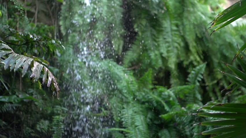 Waterfall in jungle falling in slow motion