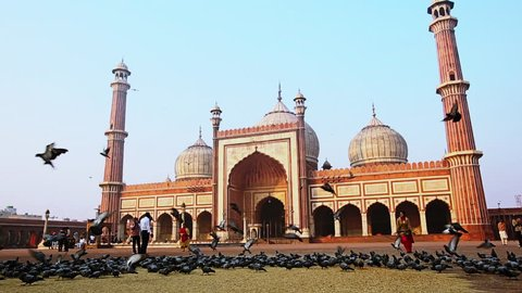 Locked-on shot of birds flying in front of a mosque, Jama Masjid, Delhi, India