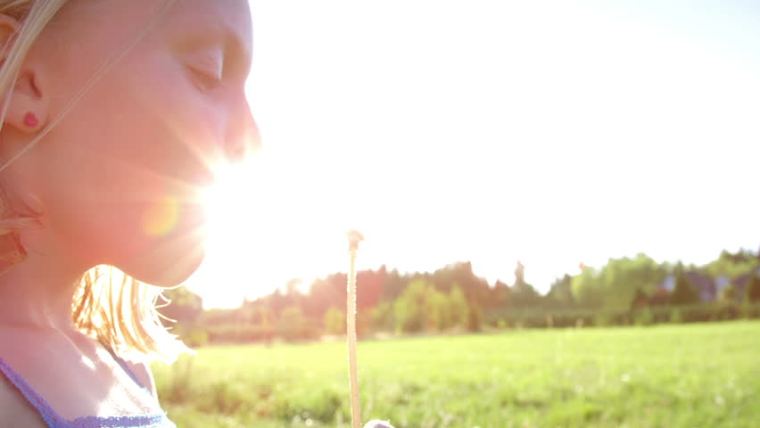 Young blonde girl blows dandelion in the park.