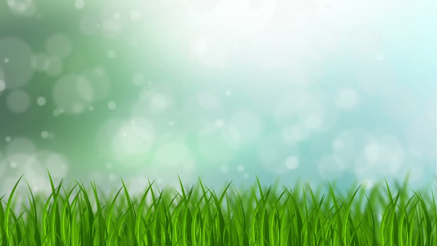Grass Background Stock Footage Video (100% Royalty-free) 4897736 |  Shutterstock