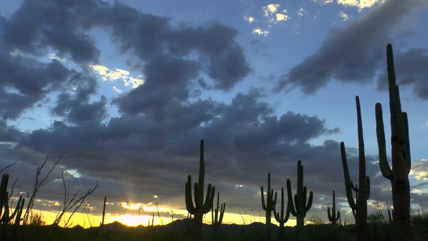 Time Lapse, Magnificent sunset sweeps across Arizona desert saguaro cactus landscape. 1080p