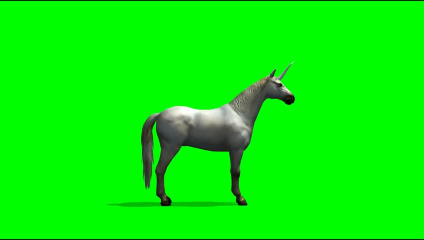 White Unicorn Horse On Green Stock Footage Video (100% Royalty-free