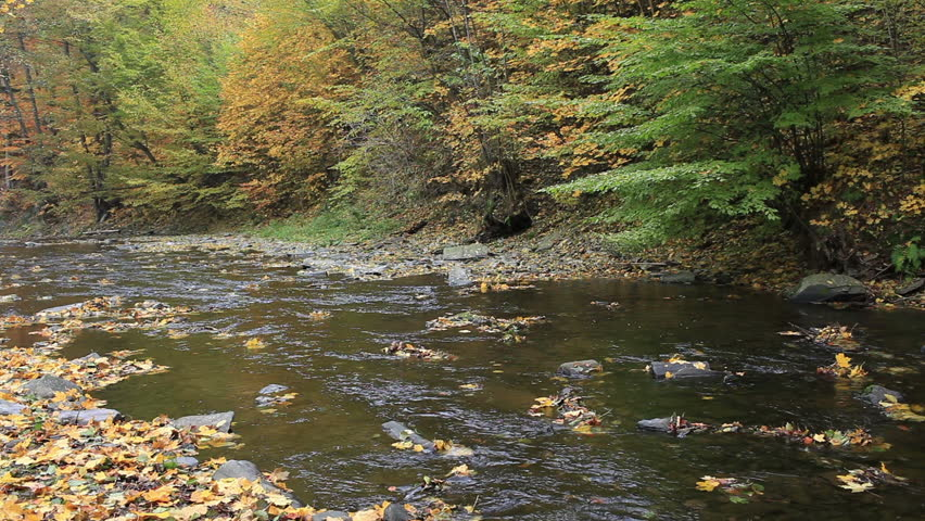 Little mountain river running through an autumn landscape with trees