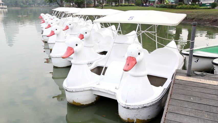 Rental duck boats in green environment   Shutterstock HD Video #5365895