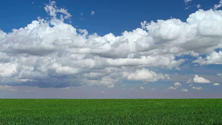 Spring cumulus clouds against a deep blue sky, above a green field. 4K Ultra HD time-lapse. 4096x2304