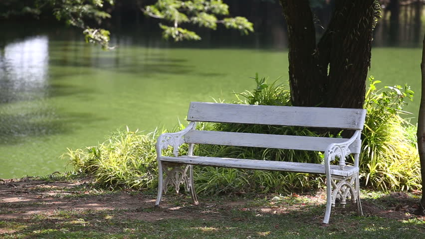 Cool Empty White Bench In Garden Stock Footage Video 100 Royalty Free 5475836 Shutterstock Ncnpc Chair Design For Home Ncnpcorg
