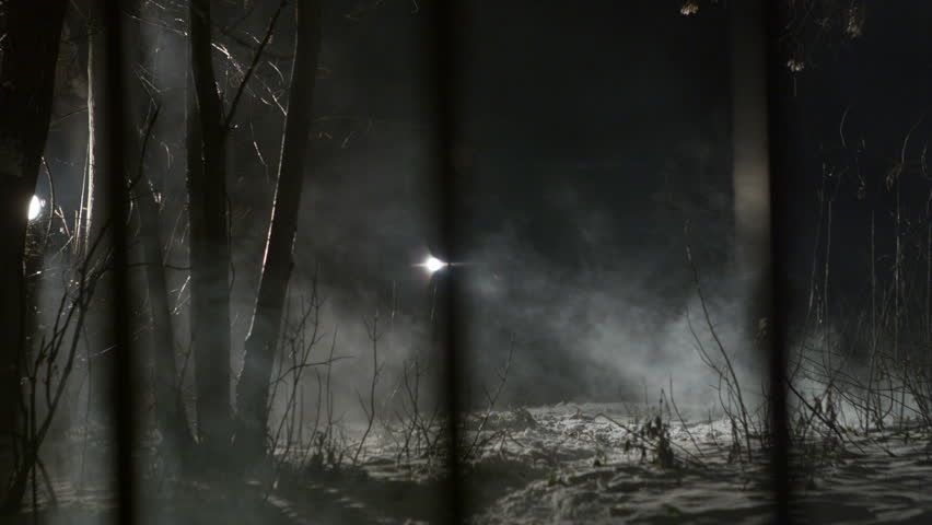 Man in woods at night with flashlight