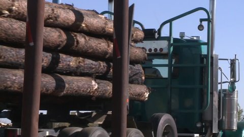 LOGGING TRUCK AT LUMBER MILL LOADED WITH LOGS AND TREES WITH HEAVY EQUIPMENT HD HIGH DEFINITION STOCK VIDEO FOOTAGE 1080 1920X1080