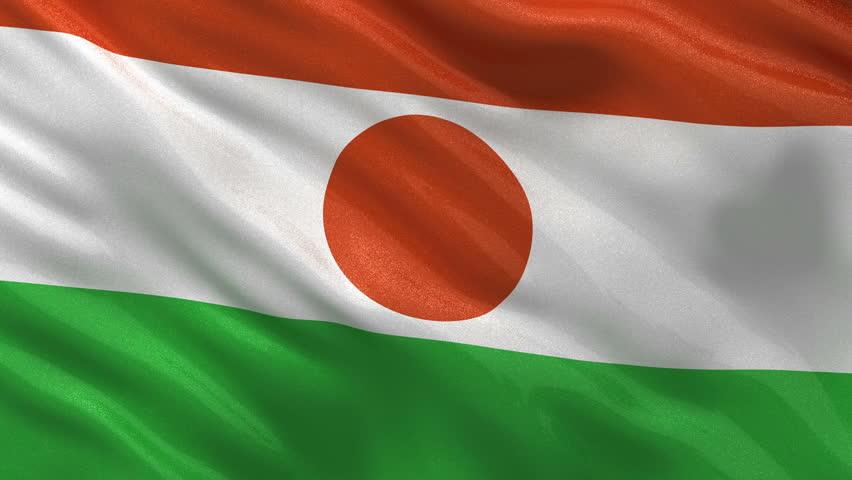 Niger Flag With Images International Flags Niger Flag Vodafone Logo