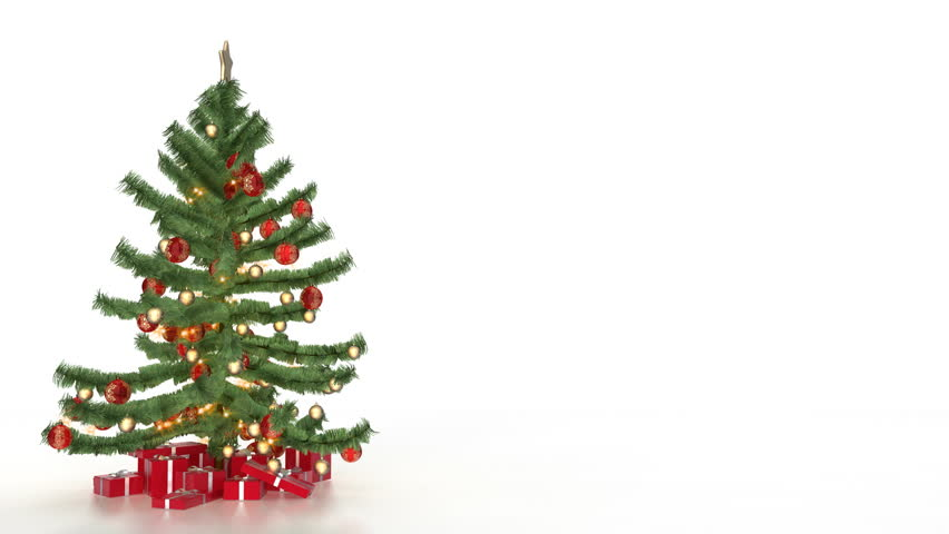 Christmas tree with gift on white background