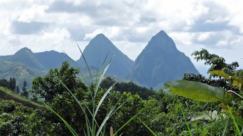 St Lucia famous Piton mountain peak jungle. The Pitons two mountainous volcanic plugs in Saint Lucia. The Pitons are a World Heritage Site. Tourist visit as a main attraction.