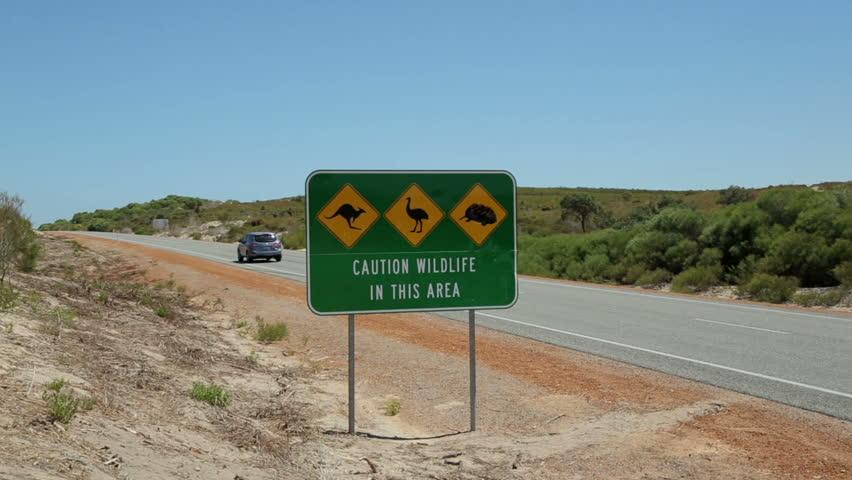 Car passes wildlife traffic road sign warning of kangaroo, emu, echidna crossing, WA, Australia