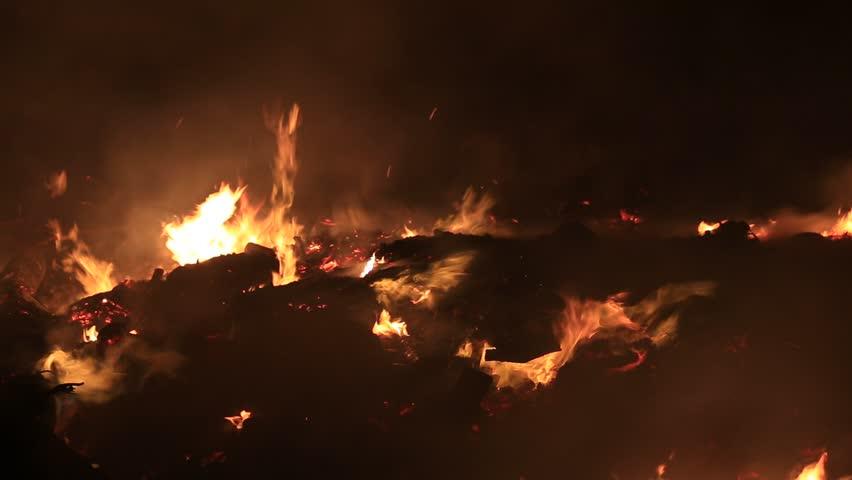 Bonfire burning trees at night. Bonfire burning brightly, heat, light,camping, big bonfire   Shutterstock HD Video #6144386