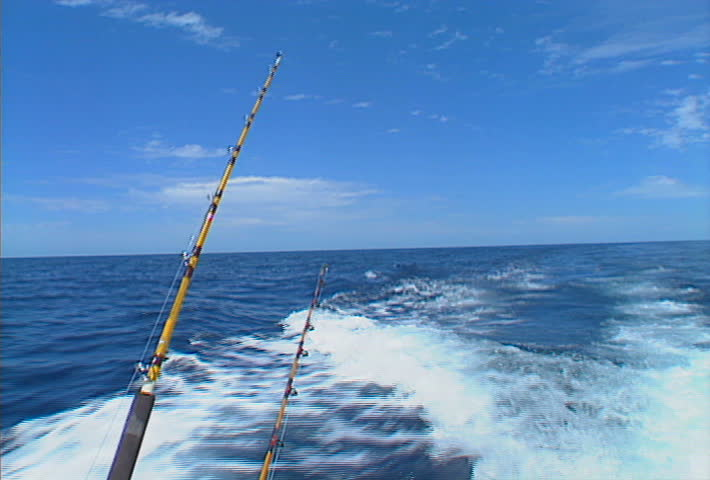 Deep-sea fishing rods, trolling off the back of a moving boat.