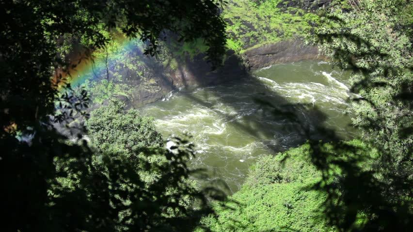 Rainbow Through The Trees At Victoria Falls, Zimbabwe.   HD Stock Video Clip