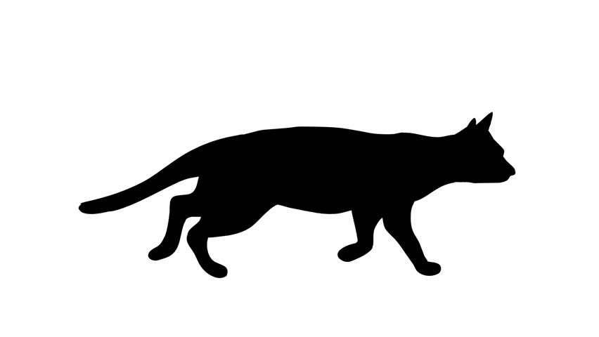 CAT WALK Cat,walks from left to the right.Last sequence includes loop.Two dimension hand drawn animation.Contains alpha matte