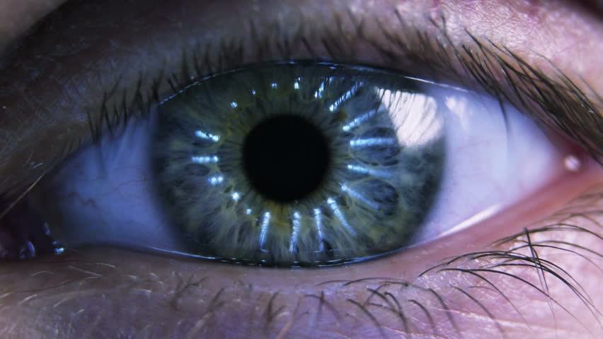 Eye iris and pupil macro. Reflected light rays into the human eye | Shutterstock HD Video #6604484