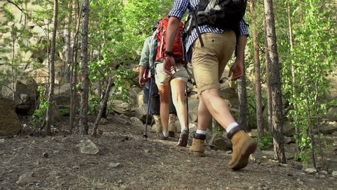 Pan of four tourists with backpacks hiking through the woods in slow motion