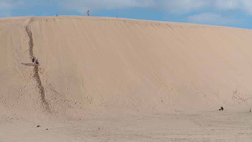 Sand Dune Surfing Down The Stock Footage Video 100 Royalty Free 6640766 Shutterstock