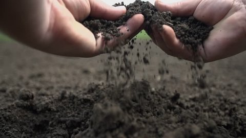 Point of view shot of two hands grabbing the soil and letting it to fall back