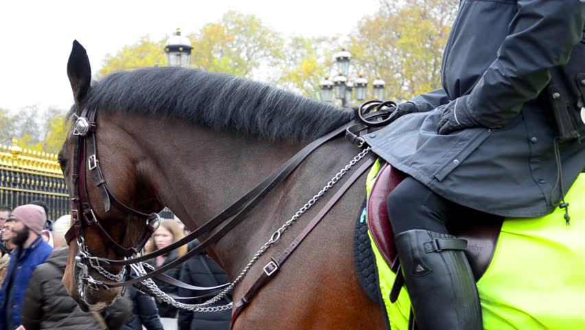 LONDON, UK - CIRCA JUL, 2014: Members metropolitan police Cavalry on duty at Horse Guards during Changing of the Guard ceremony in London circa July 2014. Area against the terrorism.