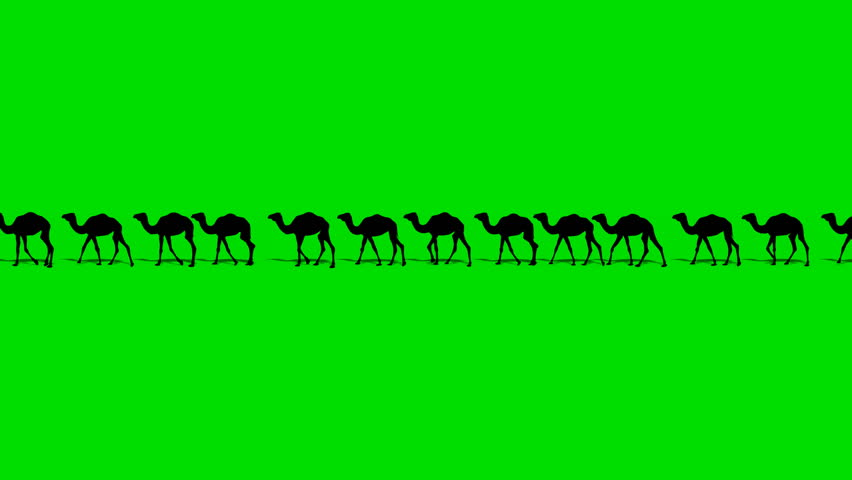 CAMEL TRAIN ON DESERT