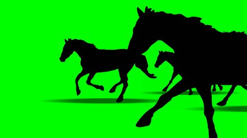 ANIMATED GALLOPING HORSES