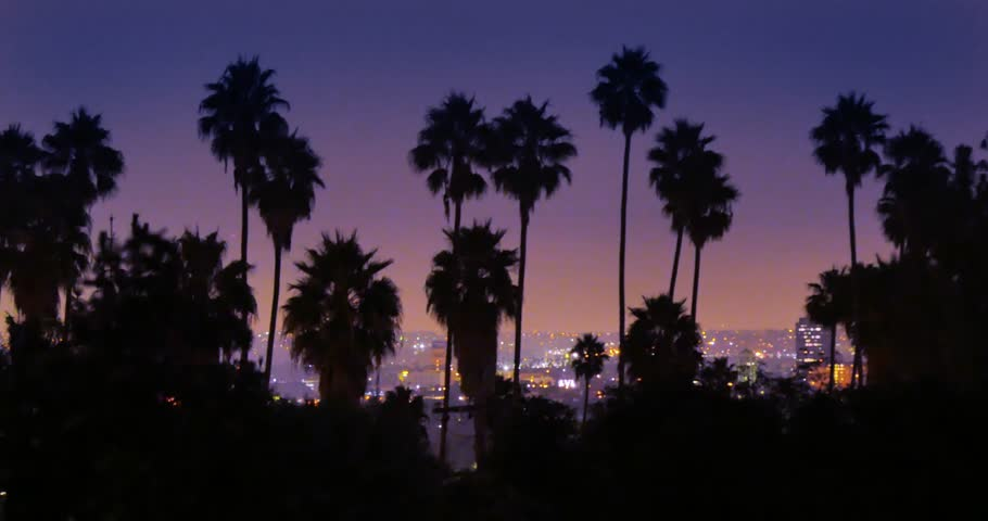 4K. Palm trees silhouettes over night city of Los Angeles, California. Timelapse.