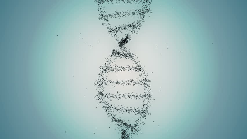 From Dna to Human figure Gray | Shutterstock HD Video #7818136