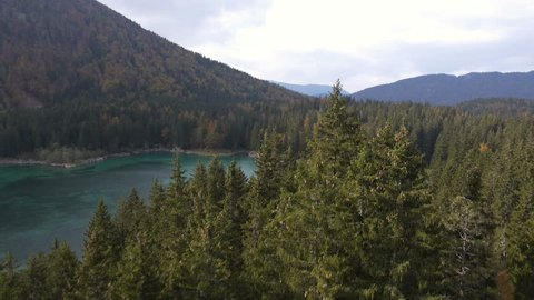 Aerial - Flight above the conifer forest. View at the highland lake