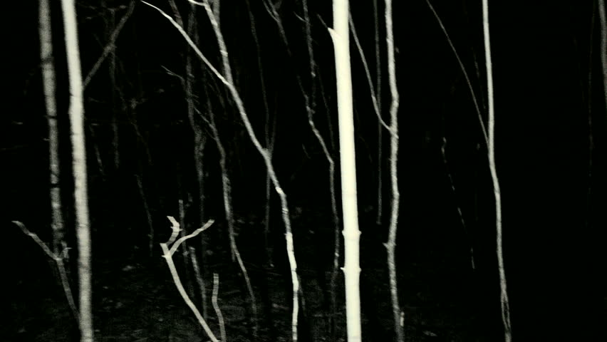 POV shot walking/running through dark spooky forest at night.