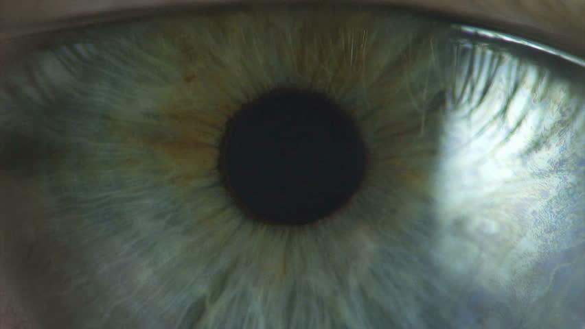 Eyes closeup. Clip 5. #8264686